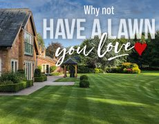 Landscape and lawn care identity and printing