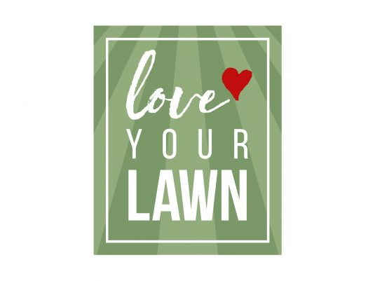 landscaping-lawncare-graphic-design3